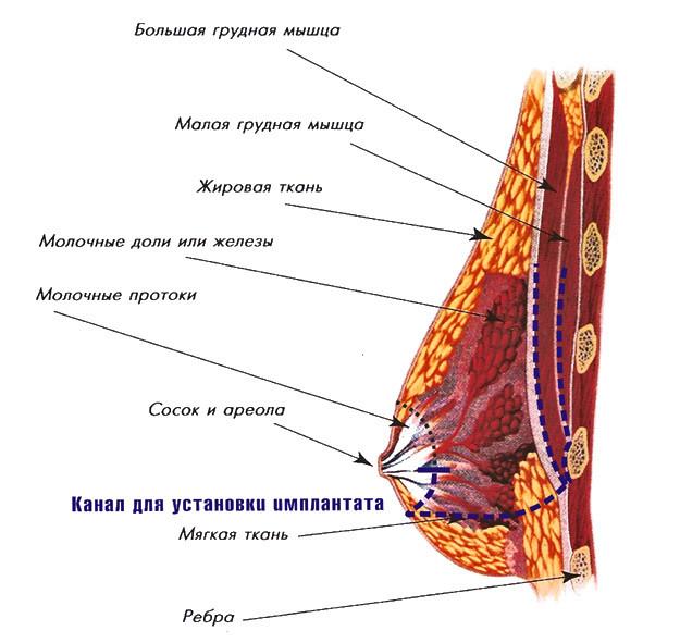 увеличение размера полового члена Артёмовск